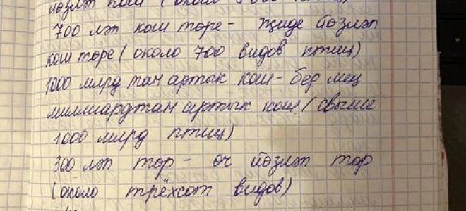 Упражнение 168. Прочитайте. Дайте название тексту, выпишите приблизительное числительное.