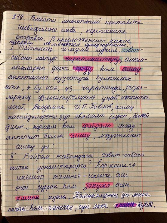 Упражнение 219. ГДЗ по татарскому языку  7 класс